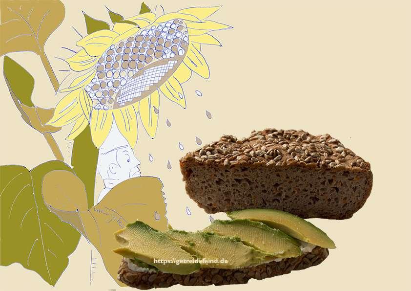 Glutenfreies Buchweizenbrot mit Sonnenblumenkerne