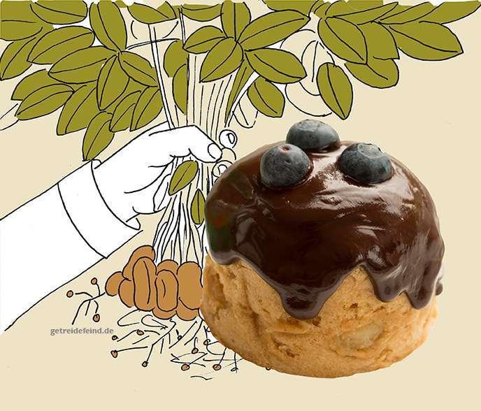Glutenfreie Erdnussmuffin, vegan und nussfrei